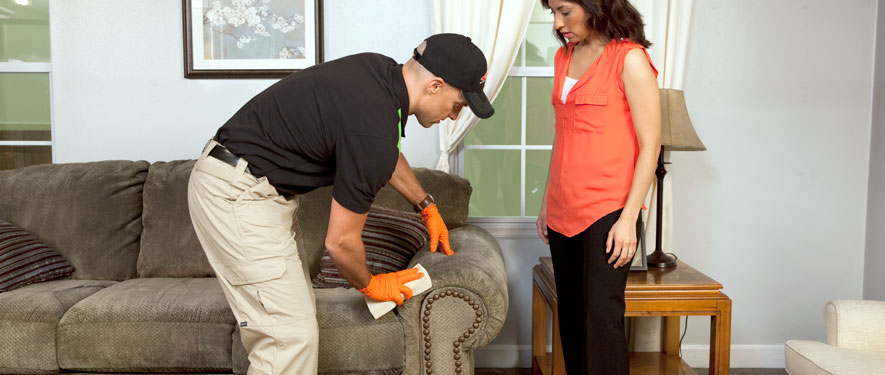 Springfield, IL carpet upholstery cleaning