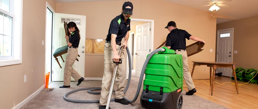 Springfield, IL cleaning services